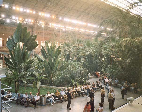 Τροπικό δάσος μέσα σε σταθμό τρένου στη Μαδρίτη (4)