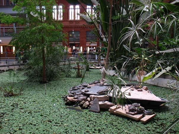 Τροπικό δάσος μέσα σε σταθμό τρένου στη Μαδρίτη (5)