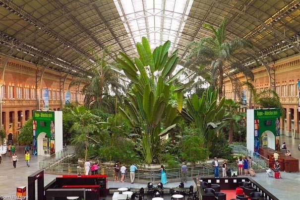 Τροπικό δάσος μέσα σε σταθμό τρένου στη Μαδρίτη (9)