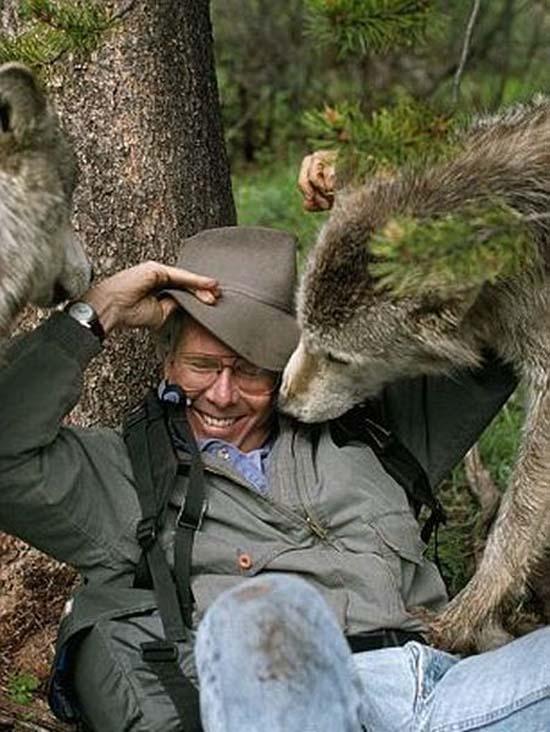 Ζώντας με τους λύκους (2)