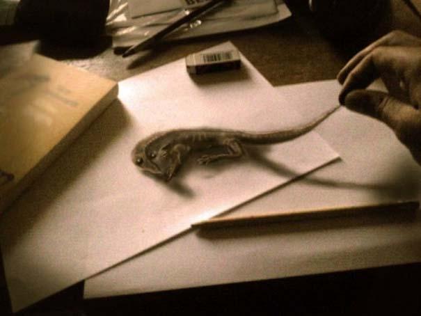 Εκπληκτικές 3D ζωγραφιές που «βγαίνουν» απ' το χαρτί (7)