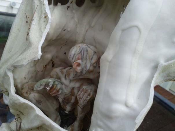 Το άγαλμα αγγέλου έκρυβε μια έκπληξη (3)
