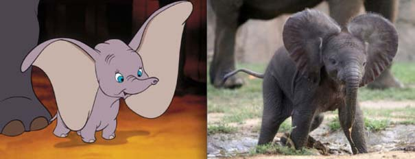 Διάσημα ζώα της Disney στην πραγματικότητα (1)