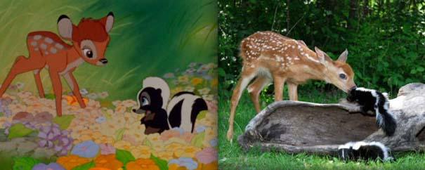 Διάσημα ζώα της Disney στην πραγματικότητα (2)