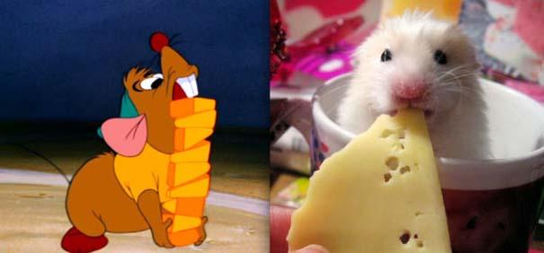 Διάσημα ζώα της Disney στην πραγματικότητα (4)