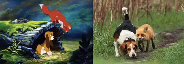 Διάσημα ζώα της Disney στην πραγματικότητα (11)