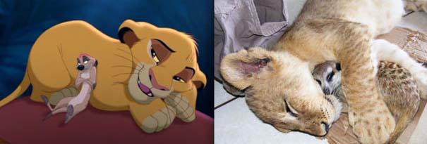 Διάσημα ζώα της Disney στην πραγματικότητα (16)