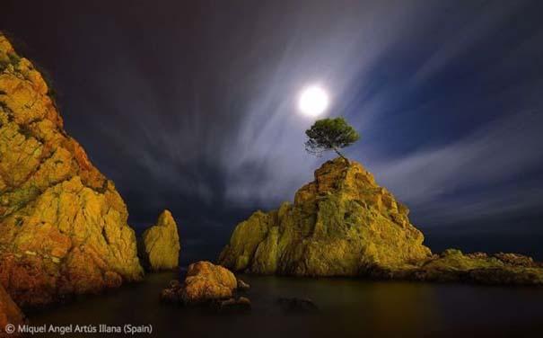 Οι καλύτερες φωτογραφίες άγριας φύσης για το 2012 (11)