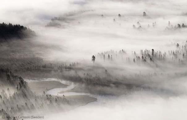 Οι καλύτερες φωτογραφίες άγριας φύσης για το 2012 (12)