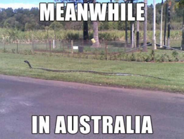 Μόνο στην Αυστραλία (19)