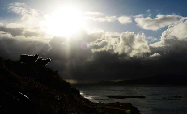 Νησιά Φερόε (12)