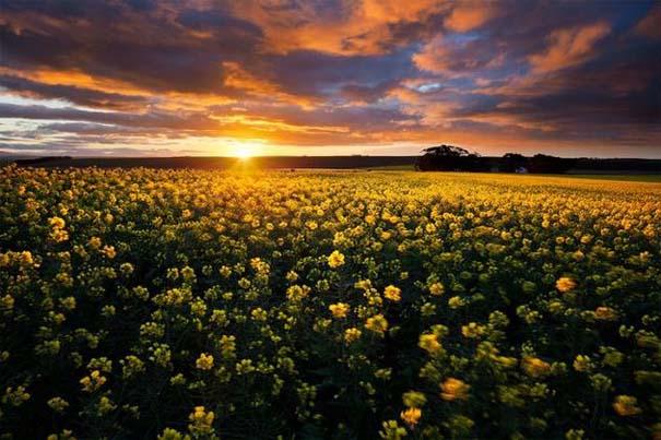 Η Νότια Αφρική σε 26 εκπληκτικές φωτογραφίες (17)