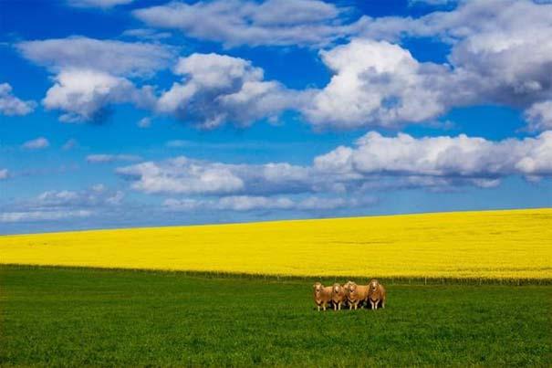 Η Νότια Αφρική σε 26 εκπληκτικές φωτογραφίες (25)