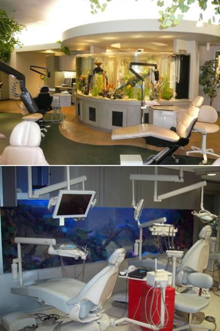 Παράξενα οδοντιατρεία (7)