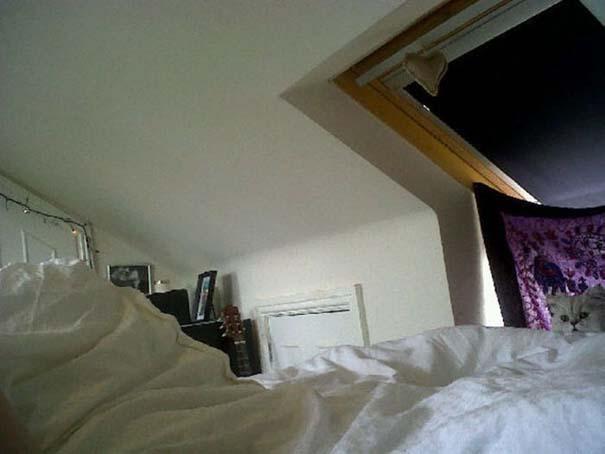 Που είναι ο Waldo; Εντοπίστε τον γάτο στις φωτογραφίες! (1)