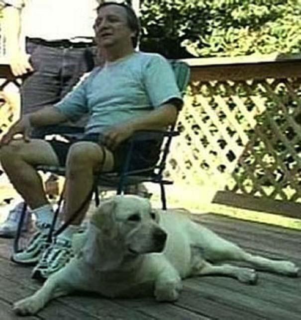 Σκύλοι: Οι καλύτεροι φίλοι του ανθρώπου (14)