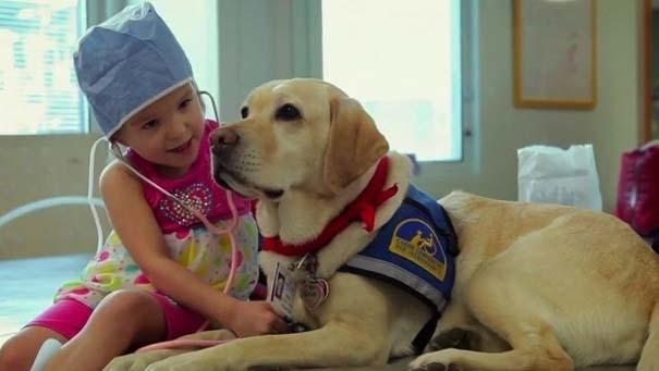 Σκύλοι: Οι καλύτεροι φίλοι του ανθρώπου (15)