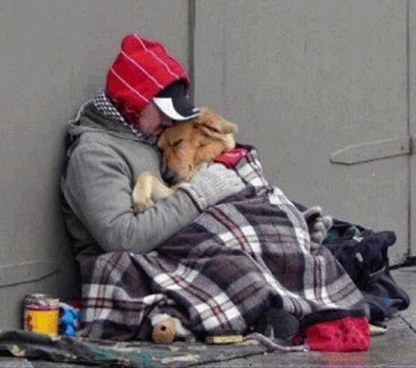 Σκύλοι: Οι καλύτεροι φίλοι του ανθρώπου (19)