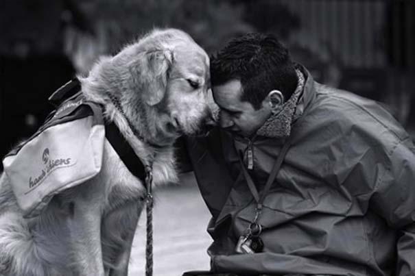 Σκύλοι: Οι καλύτεροι φίλοι του ανθρώπου (20)