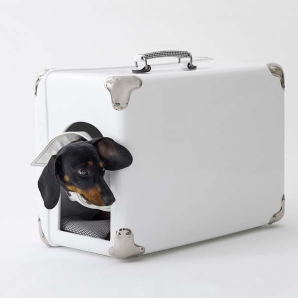 Ασυνήθιστα σκυλόσπιτα (4)