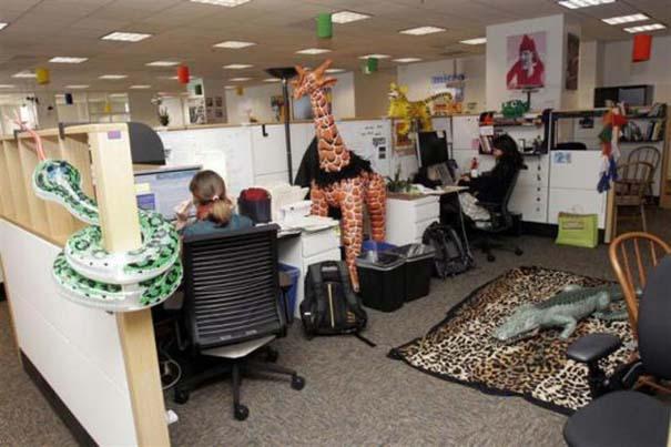 Η δουλειά στα γραφεία της Google είναι... διασκέδαση (27)