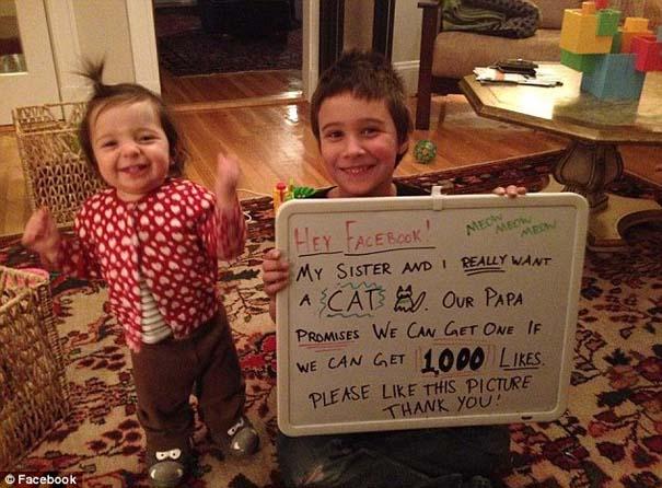Πατέρας υποσχέθηκε να πάρει γάτα στα παιδιά του αν μαζέψουν 1000 Likes στο Facebook (1)