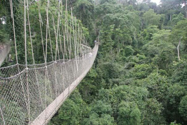 Γέφυρες για τολμηρούς (24)