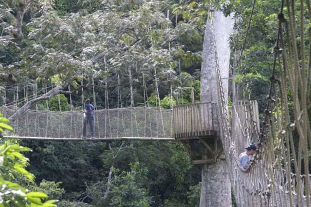 Γέφυρες για τολμηρούς (25)