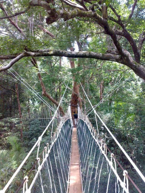 Γέφυρες για τολμηρούς (31)