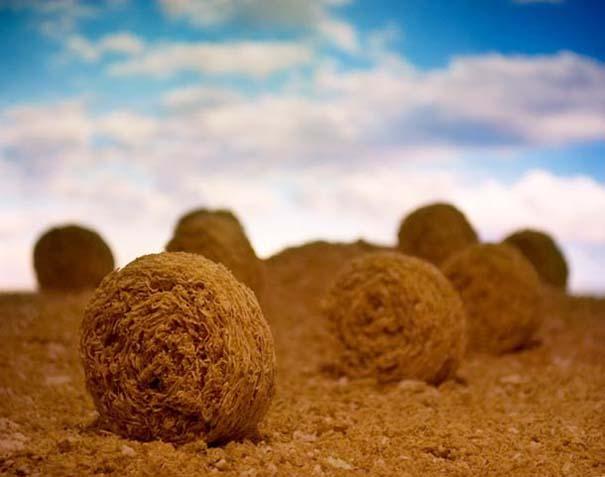 Ο κόσμος σε ένα μπολ δημητριακών (2)