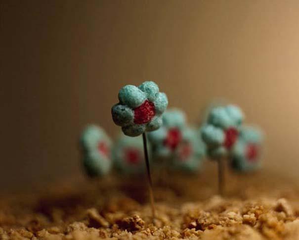Ο κόσμος σε ένα μπολ δημητριακών (11)