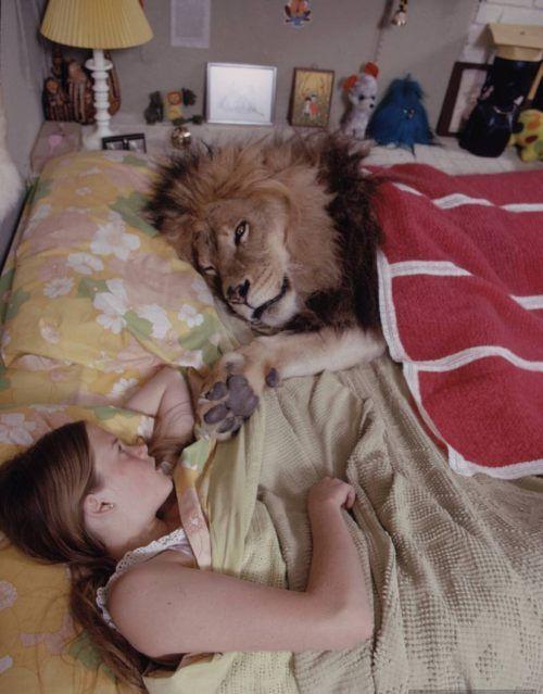 Παιδιά και άγρια ζώα (5)