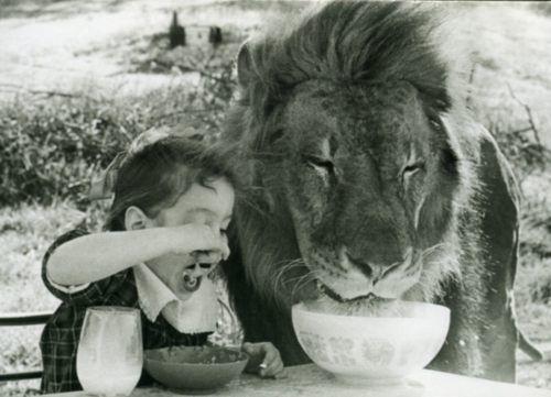 Παιδιά και άγρια ζώα (8)