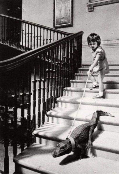 Παιδιά και άγρια ζώα (14)