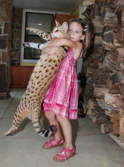 Παιδιά και άγρια ζώα (15)