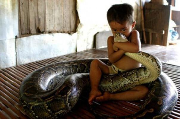 Παιδιά και άγρια ζώα (16)