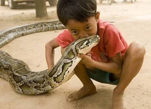 Παιδιά και άγρια ζώα (21)