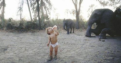 Παιδιά και άγρια ζώα (26)