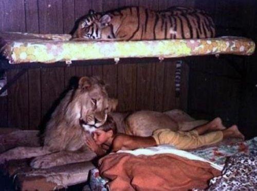 Παιδιά και άγρια ζώα (27)