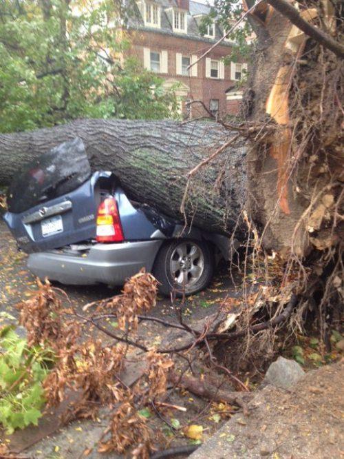 Ασυνήθιστα τροχαία ατυχήματα (26)