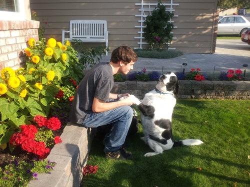 Σκύλοι σε απίθανες στιγμές (4)