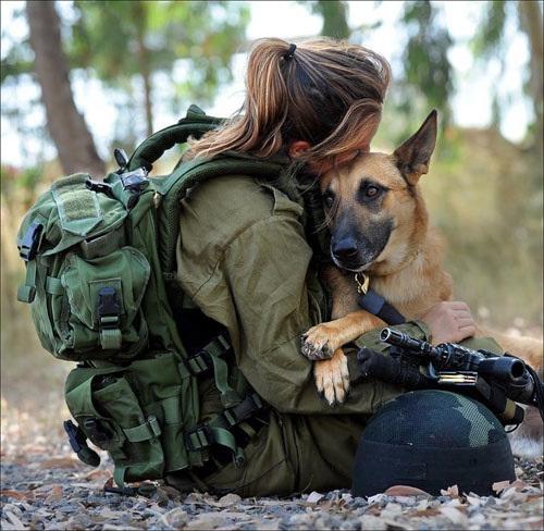 Σκύλοι σε απίθανες στιγμές (5)