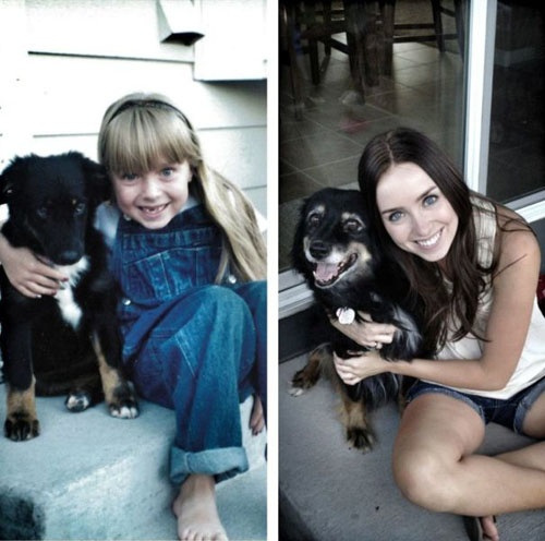Σκύλοι σε απίθανες στιγμές (33)