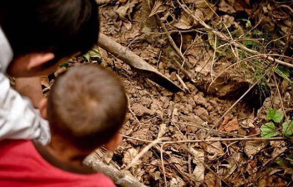Σοκαριστικό σνακ για τα παιδιά της Καμπότζης (6)