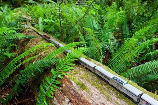 Εκπληκτικές φωτογραφίες ενός τρένου μινιατούρας που διασχίζει τον Καναδά (14)