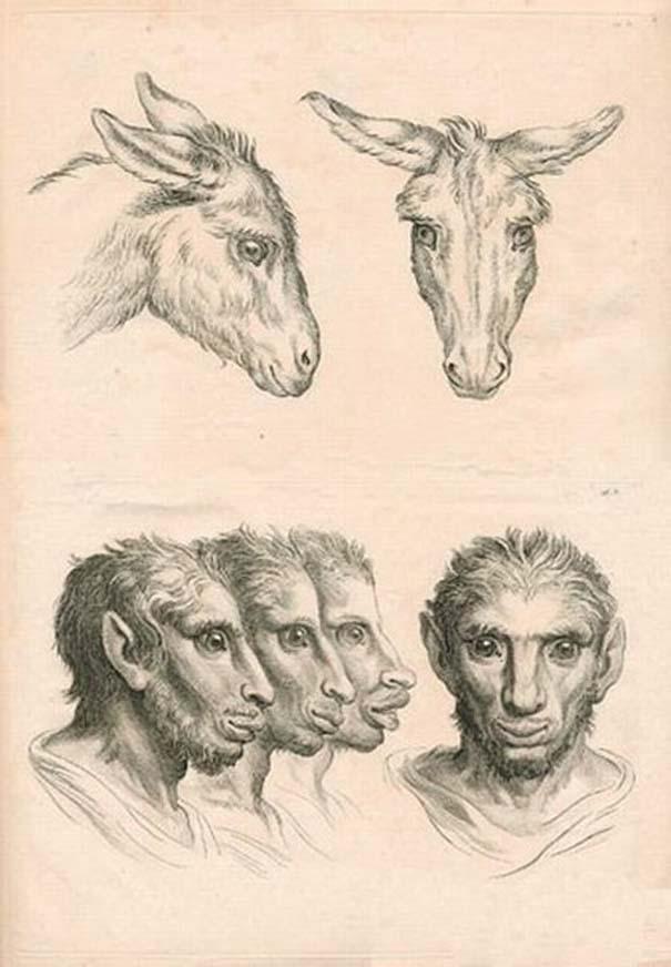 Αν η εξέλιξη του ανθρώπου έπαιρνε άλλη τροπή... (3)