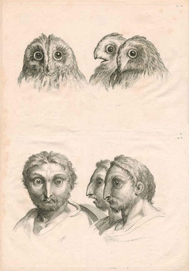 Αν η εξέλιξη του ανθρώπου έπαιρνε άλλη τροπή... (7)
