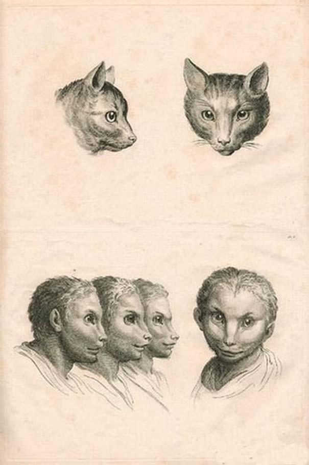 Αν η εξέλιξη του ανθρώπου έπαιρνε άλλη τροπή... (8)