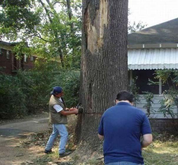 Ένα δέντρο, ένα πριόνι και δυο άνδρες χωρίς μυαλό... (1)