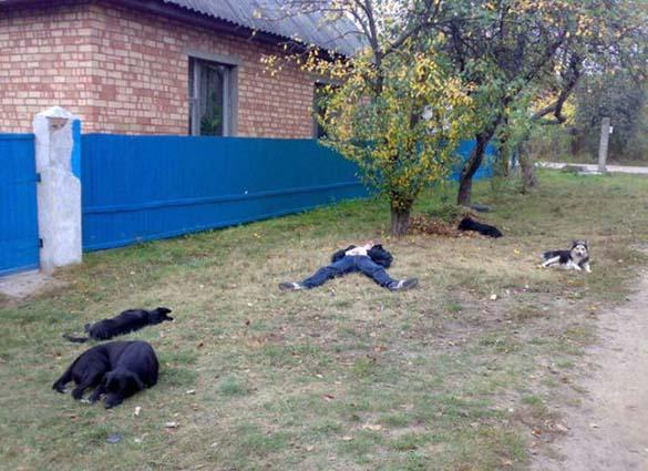 Εν τω μεταξύ στη Ρωσία… (2)